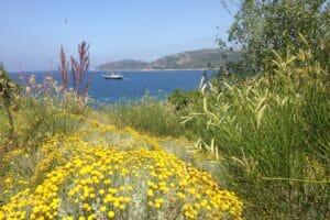 South Corsica - View from U Capu Biancu