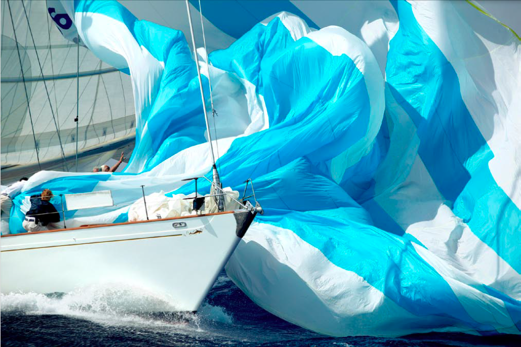 Whitefin - sail